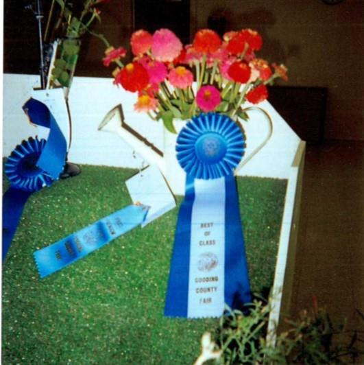 Blue ribbon winning flowers